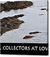 Mussel Collectors At Low Tide - Shellfish - Low Tide Canvas Print