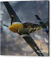 Mustang Tribute Canvas Print