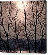 Muted Sunrise Canvas Print