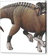 Muttaburrasaurus Dinosaur Canvas Print