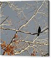 My Branch Canvas Print