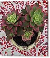 My Garden Series - Mosaica Canvas Print