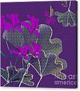 My Irises Canvas Print