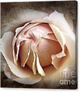 My Love Is Unfolding Canvas Print