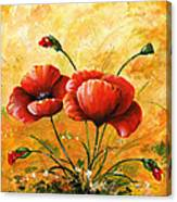 My Poppies 047 Canvas Print