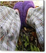 My Purple Slippers Canvas Print
