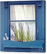 My San Francisco Window Garden Canvas Print