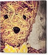 My Teddy Bear Canvas Print