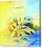 In My View This Is Beautiful, But It Is Also Extremely Cold  Canvas Print