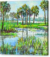 Myakka Lake With Palms Canvas Print