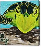 Myrtle Canvas Print