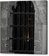Mysterious Face In Cell Canvas Print