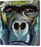 Mysterious Gorilla  Canvas Print