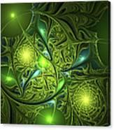 Mysterious Lights Canvas Print