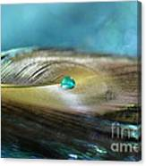 Mysterious Turquoise Canvas Print