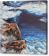 Mysterious Water Canvas Print
