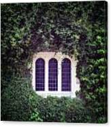 Mysterious Window Canvas Print