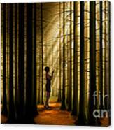 Mysterious Wood Canvas Print
