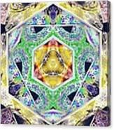 Mystery Cube Canvas Print