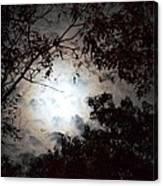 Mystery Of Moonlight Canvas Print