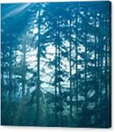 Mystic Light Canvas Print