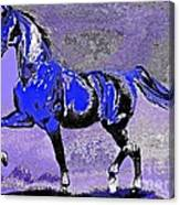 Mysterious Stallion Abstract Canvas Print