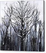 Mystic Winter Canvas Print
