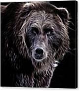 Mystical Bear Canvas Print