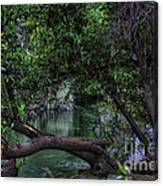 Mystical River Canvas Print