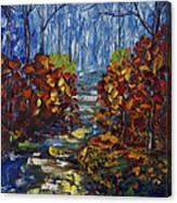 Mysty Morning Path Canvas Print