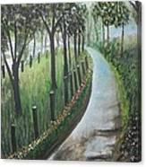 Misty Morning Canvas Print