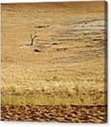 Namibian Desert Scene 1 Canvas Print