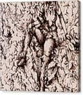 Nan Dungortheb Detail Canvas Print