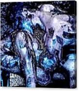 Nano Molto Canvas Print