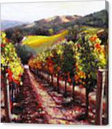 Napa Hill Side Vineyard Canvas Print