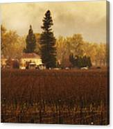 Napa In The Fall Canvas Print