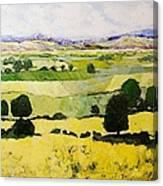 Napa Yellow2 Canvas Print