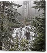 Narada Fall Mt Rainier II Canvas Print