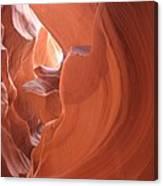 Narrow Canyon Xi Canvas Print