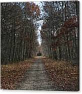 Narrow Path On Recovery Road Canvas Print