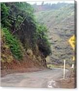 Narrow Road - North Maui Canvas Print
