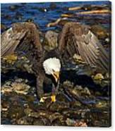 National Symbol Canvas Print