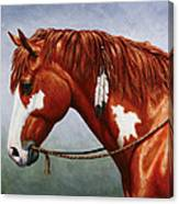 Native American Pinto Horse Canvas Print