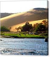 Natura E Deserto Canvas Print