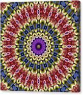 Natural Attributes 14 Square Canvas Print