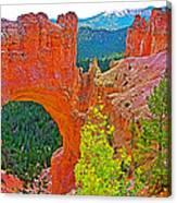 Natural Bridge In Bryce Canyon National Park-utah  Canvas Print