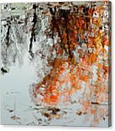 Natural Paint Daubs Canvas Print