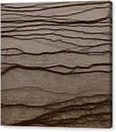 Natural Patterns Canvas Print