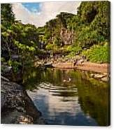Natural Pool - The Beautiful Scene Of The Seven Sacred Pools Of Maui. Canvas Print