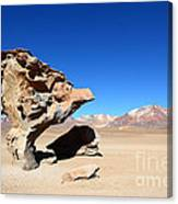 Natural Rock Sculpture Canvas Print